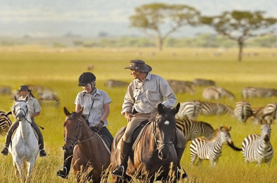 Guided experience with zebras in scenic Tanzania, East Africa.